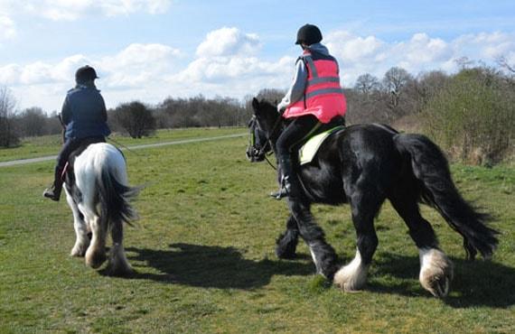 Horse Riding in Birmingham